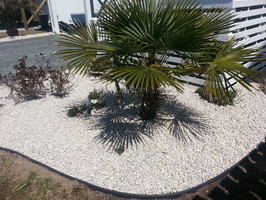 Viking Lawn Care And Landscaping Llc Surf City Nc 919 394